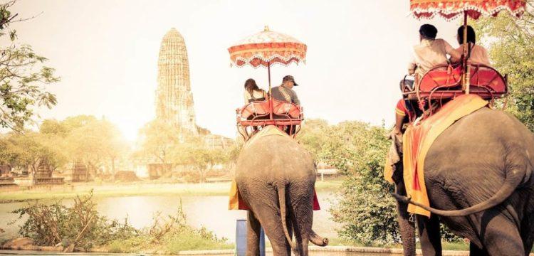 タイの象乗り観光